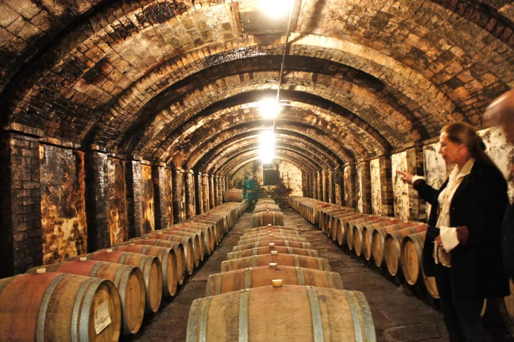 """As cantinas onde fazem o vinho da """"fattoria"""""""
