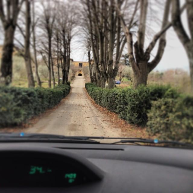 A entrada da minha casa...foto Mamisa