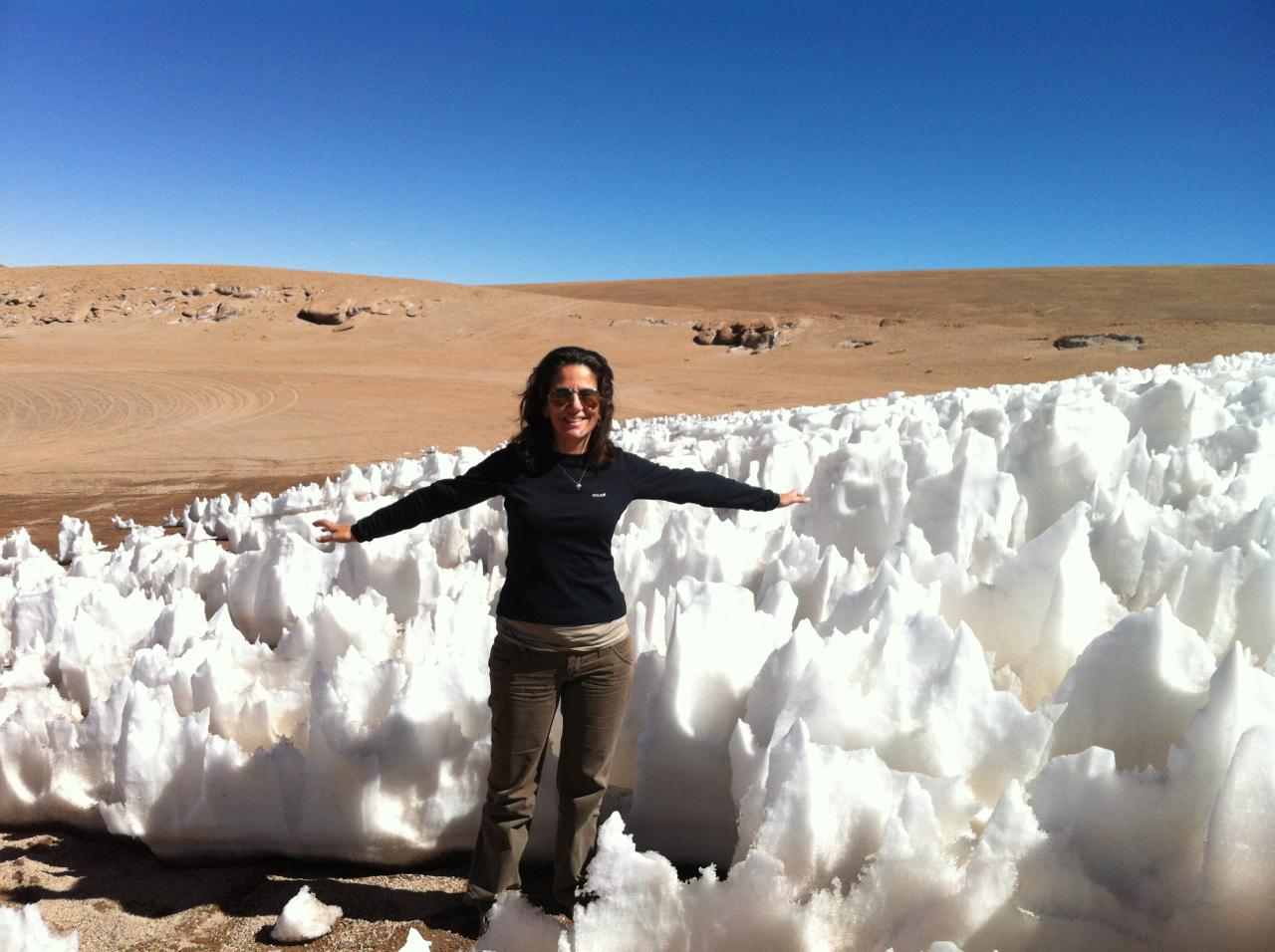 Atacama fellings