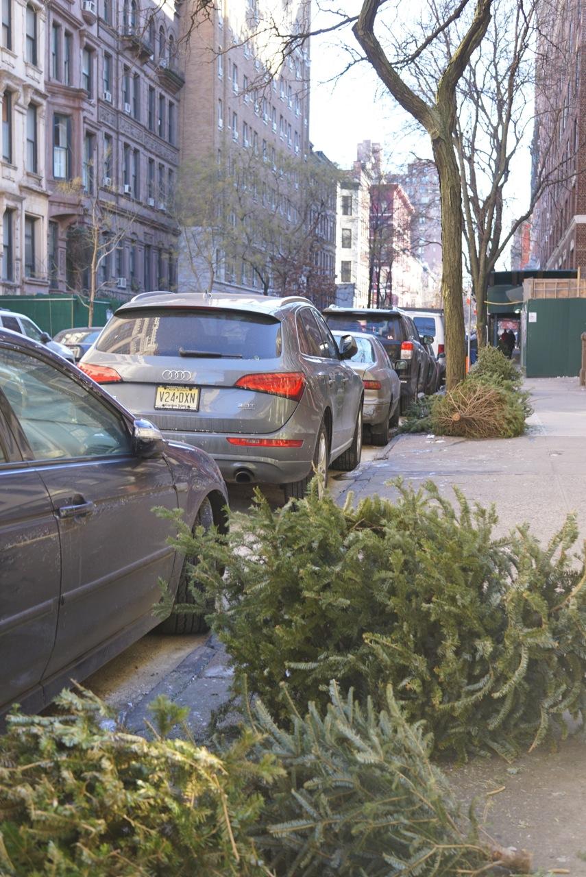 """E as árvores de Natal nas estradas aguardam o """"chipper""""..."""