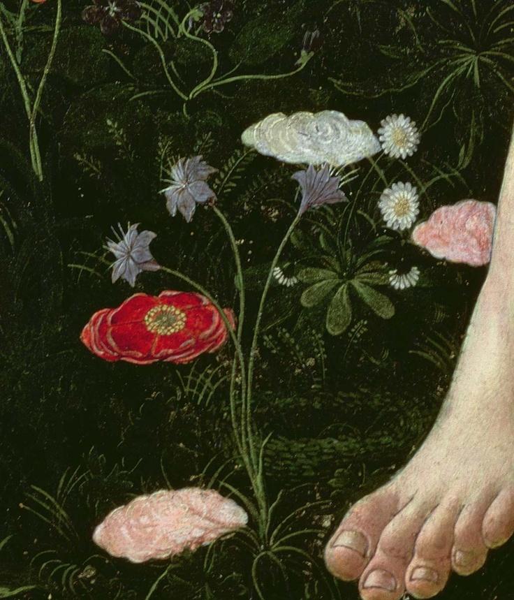 Detalhe das flores no chão.