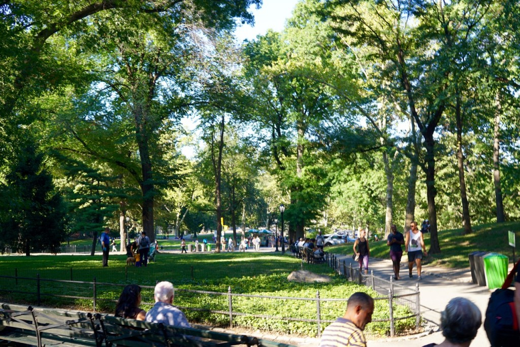 Passeando pelo Central Park.