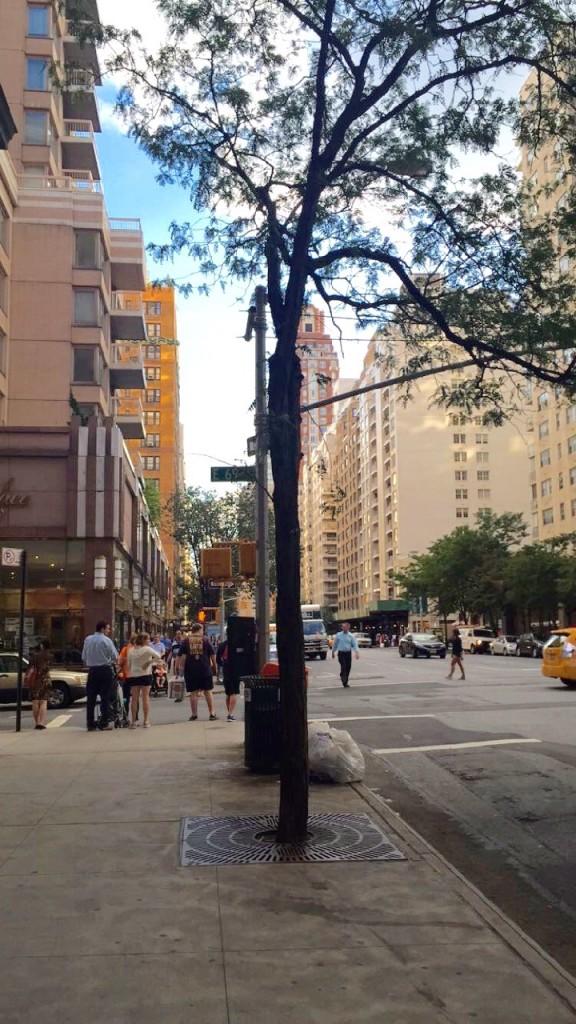 Desci as mesmas ruas que andava todos os dias quando morei em Nova Iorque de 1986 a 1989 antes de ir morar na Itália. Trabalhava na Bloomingdale's e andava a pé uns 20 minutos até lá.