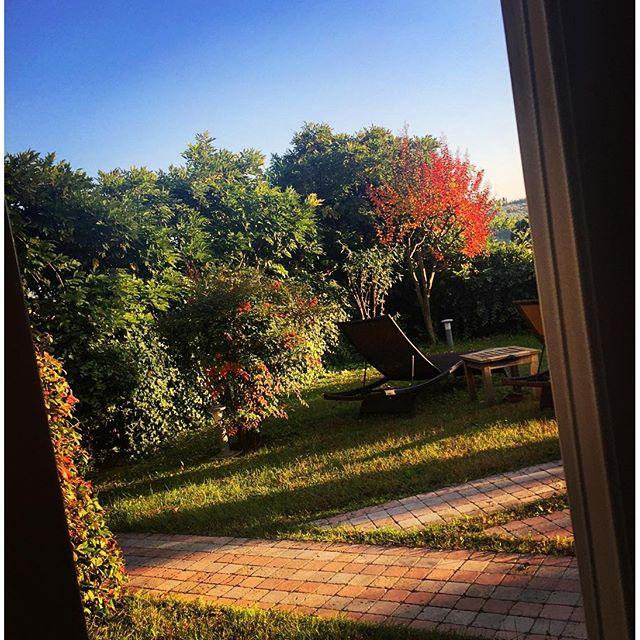 Da minha janela se vê bem o outono chegando!!