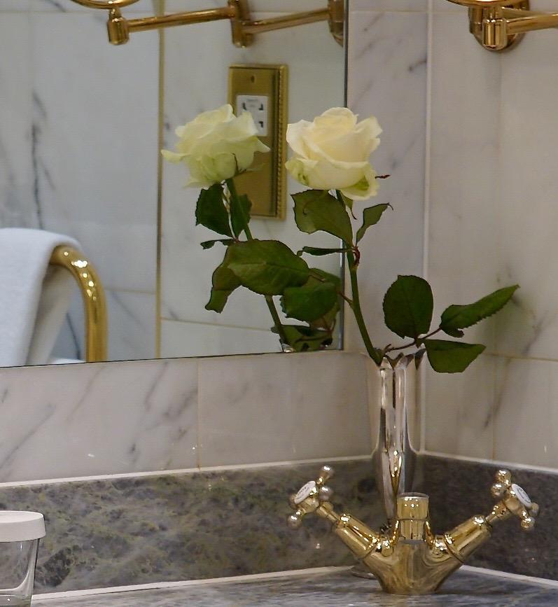 Esta rosa é exclusiva do Ritz!