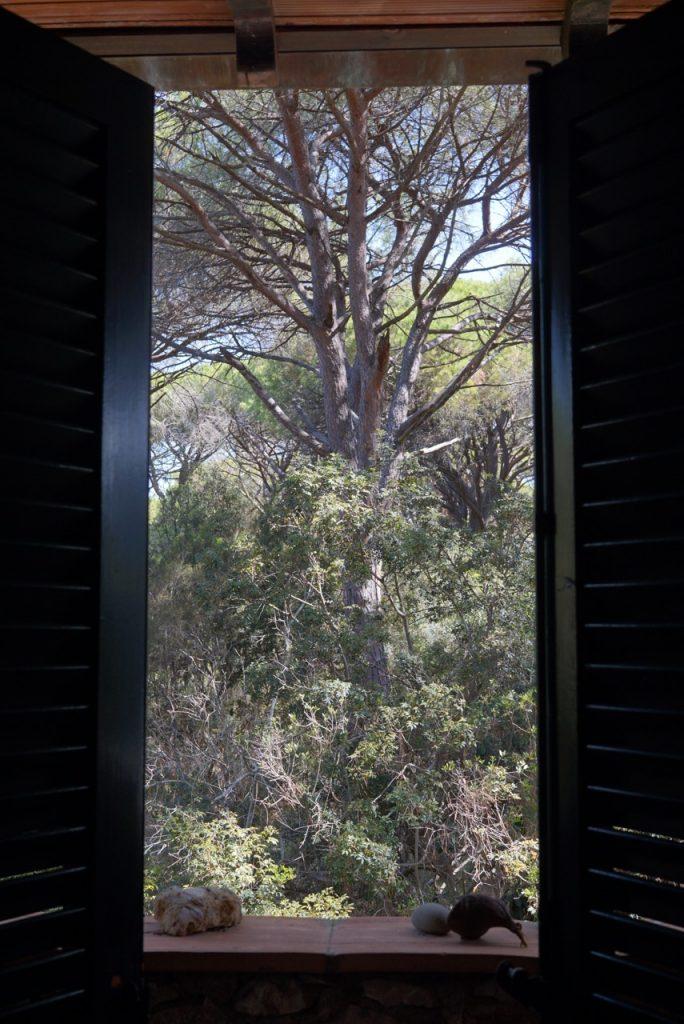 A vista do quarto