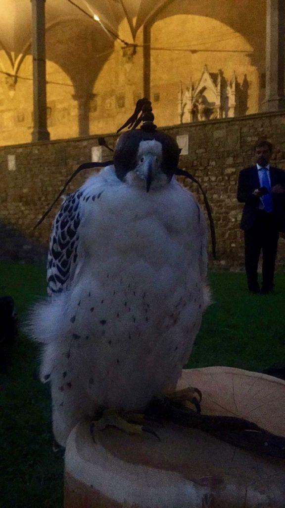 O símbolo da sua marca é a águia e tinham duas!